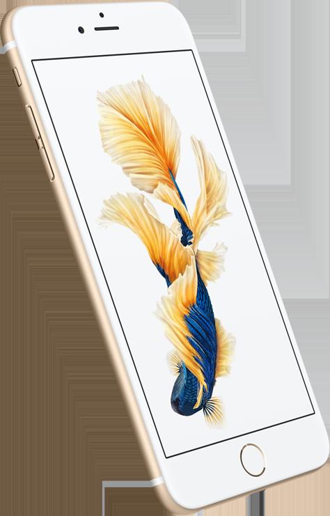 iPhone 6S и iPhone 6S plus — характеристики и возможности - фото 2 | Сервисный центр Total Apple