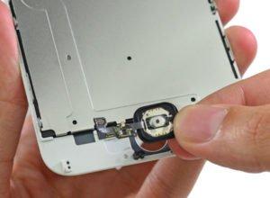 Ремонт и замена кнопки Home на iPhone 6 – service-iPhone.ru